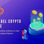 Smart way to get more income in White label Crypto Exchange