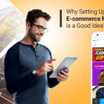 Why Setting Up a Multi-vendor E-commerce Marketplace is a Good Idea?
