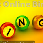 See the website by checking the best online bingo reviews